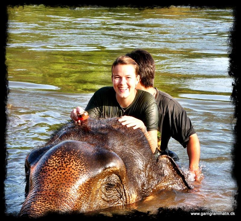 Elefanten Olivier_3