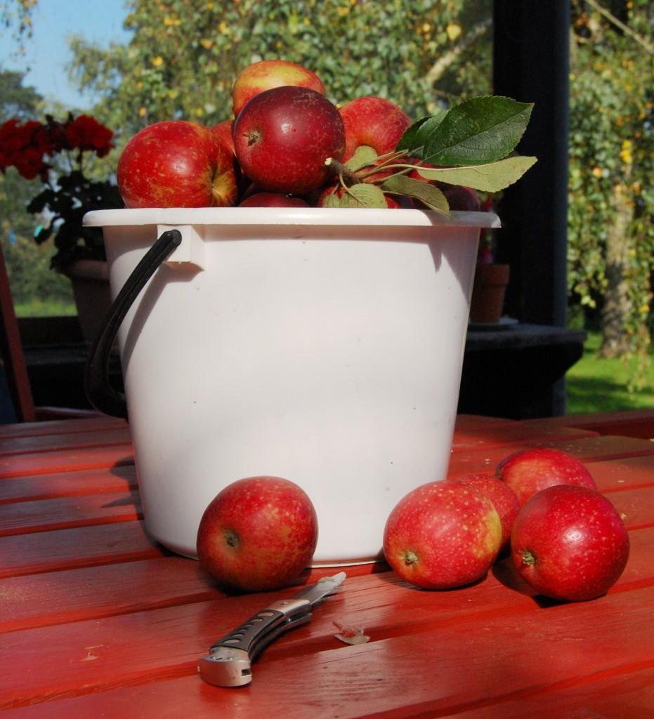 Æbler_2