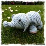 Elefanten Olivier_1